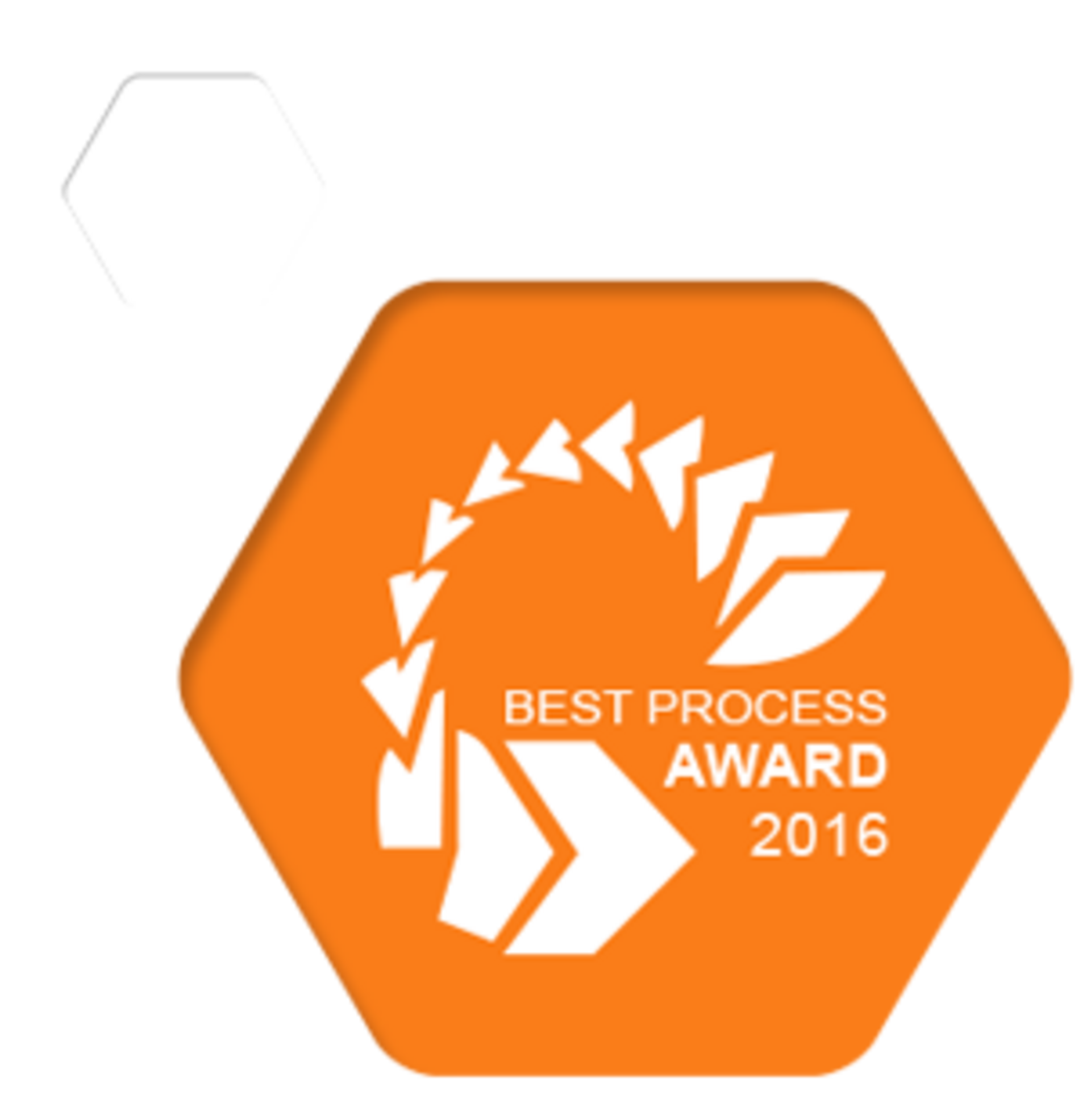 Best Process Award 2017